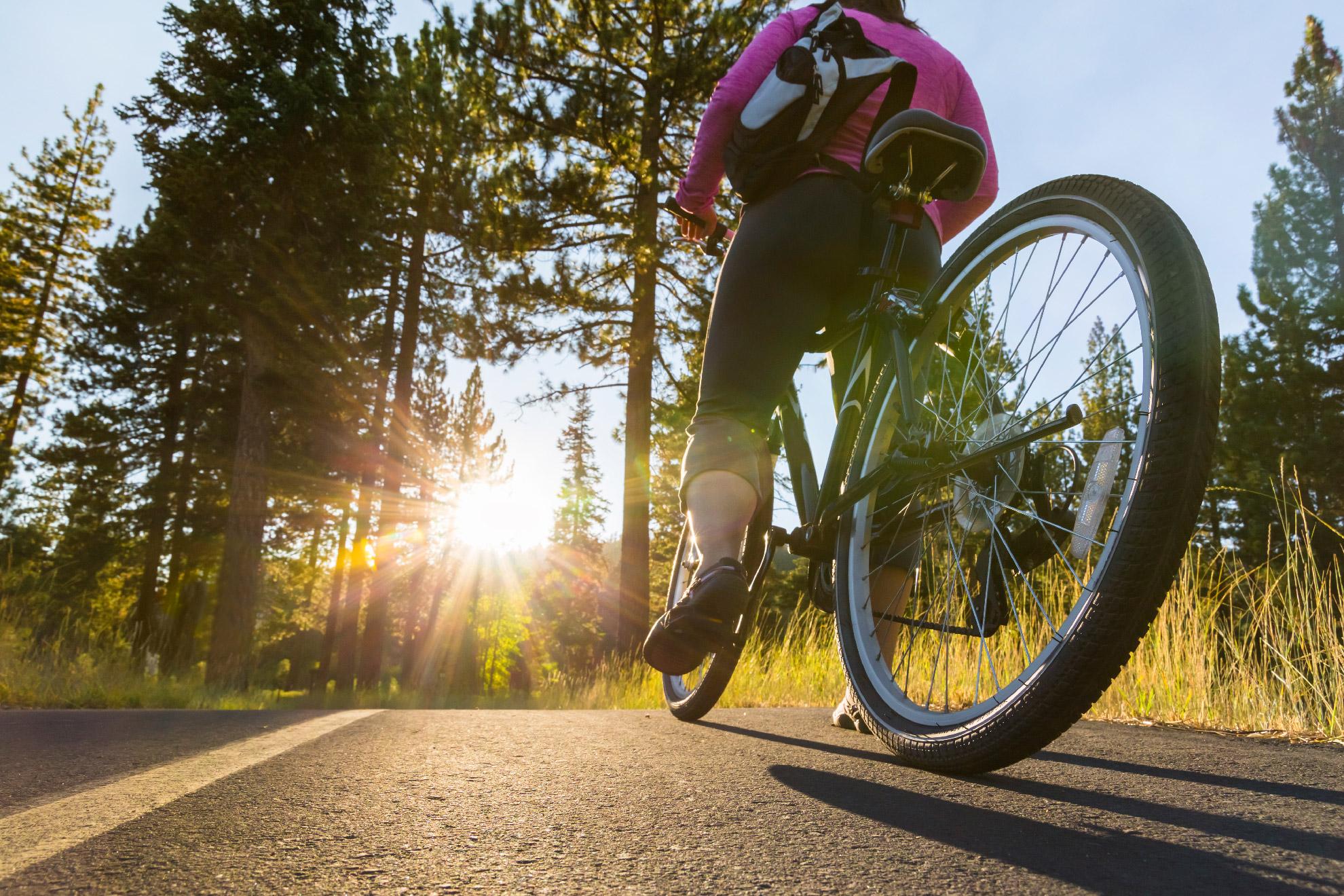 Bike - pista ciclabile in Val di Sole